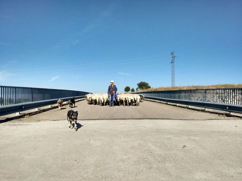 Puente Oquillas